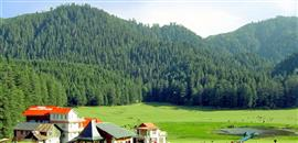 Chail Naldhera Tour Package